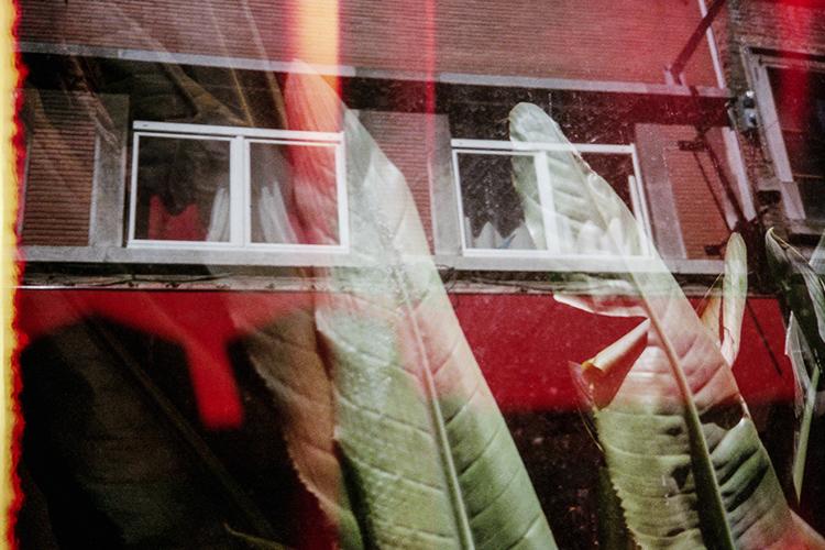 Colors © Flore Willefert-26