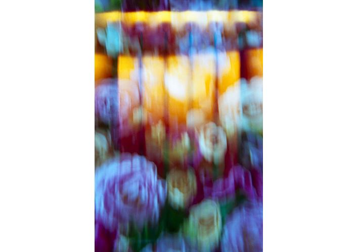 Flowers © Flore Willefert-13