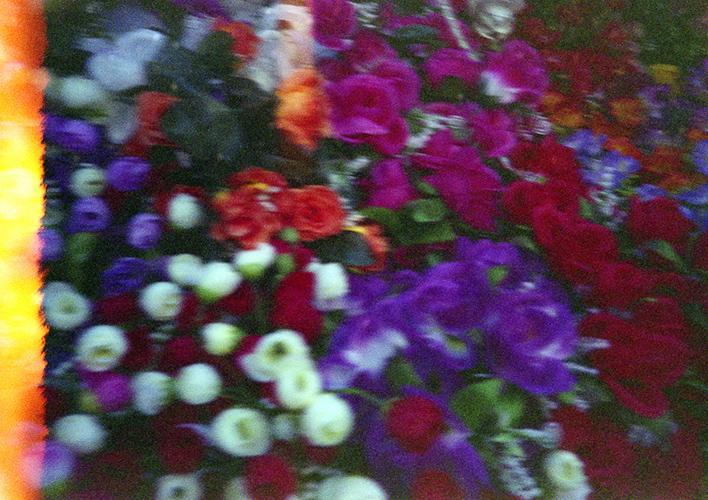 Flowers © Flore Willefert-14